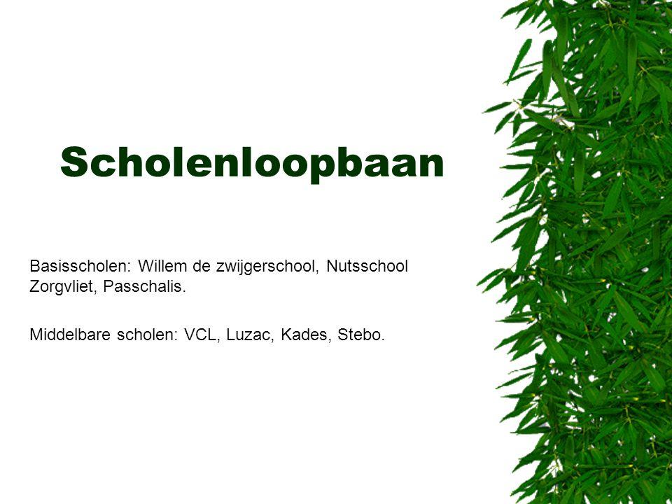 Scholenloopbaan Basisscholen: Willem de zwijgerschool, Nutsschool Zorgvliet, Passchalis. Middelbare scholen: VCL, Luzac, Kades, Stebo.