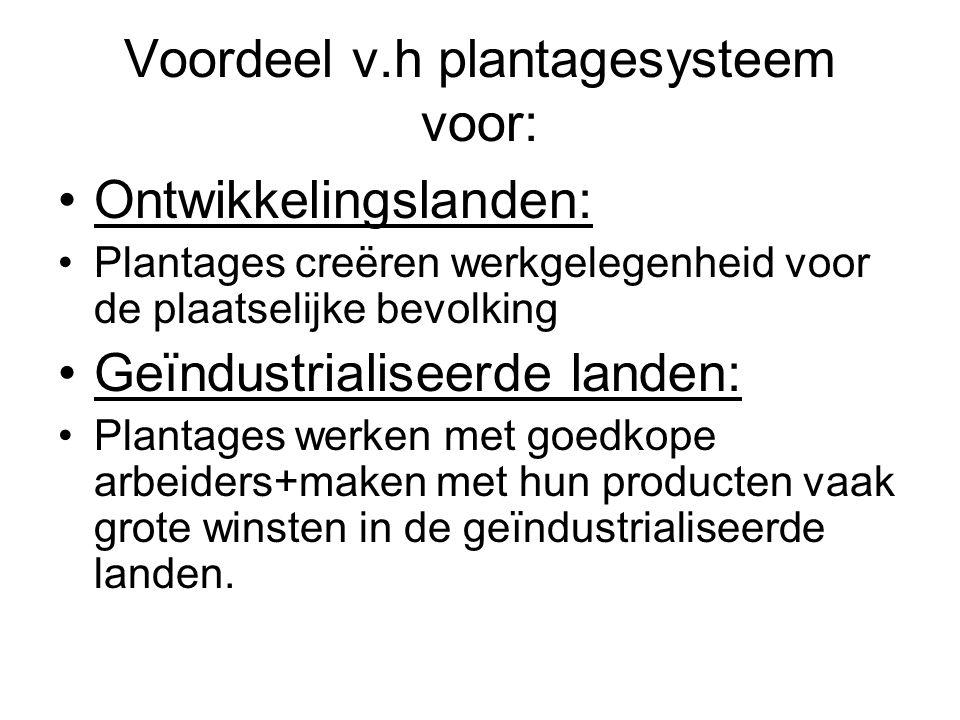 Voordeel v.h plantagesysteem voor: Ontwikkelingslanden: Plantages creëren werkgelegenheid voor de plaatselijke bevolking Geïndustrialiseerde landen: P