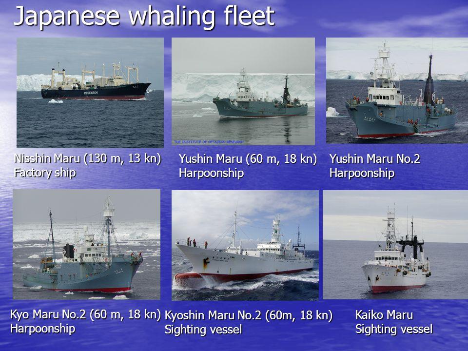 Japanese whaling fleet Nisshin Maru (130 m, 13 kn) Factory ship Yushin Maru (60 m, 18 kn) Harpoonship Yushin Maru No.2 Harpoonship Kyo Maru No.2 (60 m
