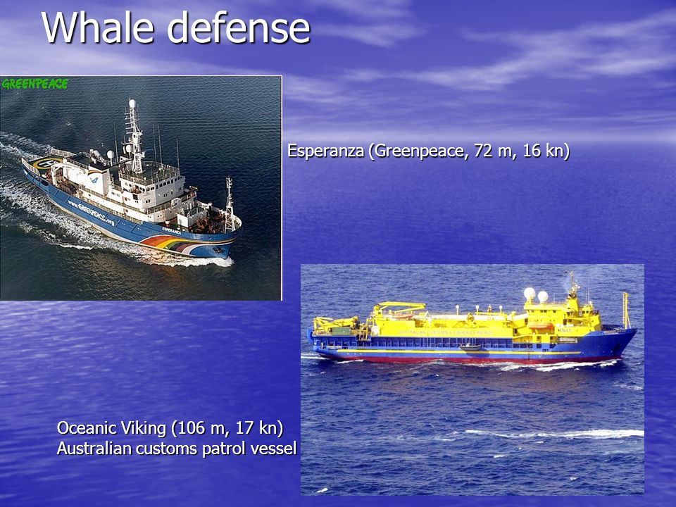 Whale defense Esperanza (Greenpeace, 72 m, 16 kn) Oceanic Viking (106 m, 17 kn) Australian customs patrol vessel