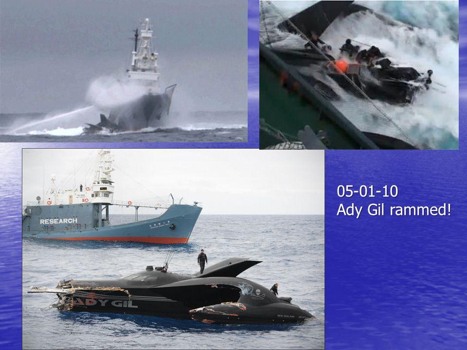05-01-10 Ady Gil rammed!