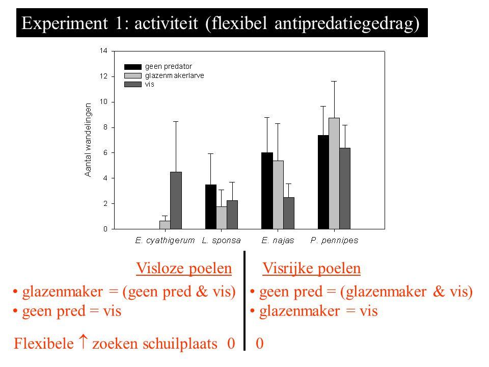 glazenmaker = (geen pred & vis) geen pred = vis geen pred = (glazenmaker & vis) glazenmaker = vis Visloze poelenVisrijke poelen Experiment 1: activiteit (flexibel antipredatiegedrag) Flexibele  zoeken schuilplaats 0 0