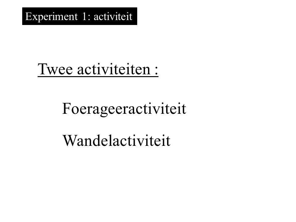 Twee activiteiten : Foerageeractiviteit Wandelactiviteit