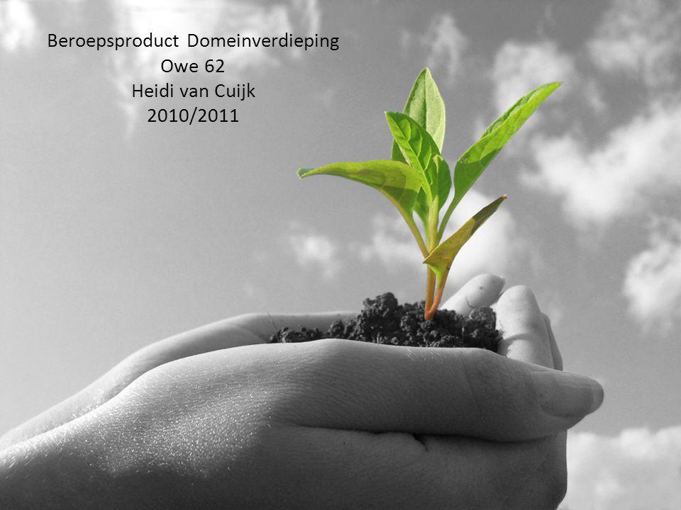 Beroepsproduct Domeinverdieping Owe 62 Heidi van Cuijk 2010/2011