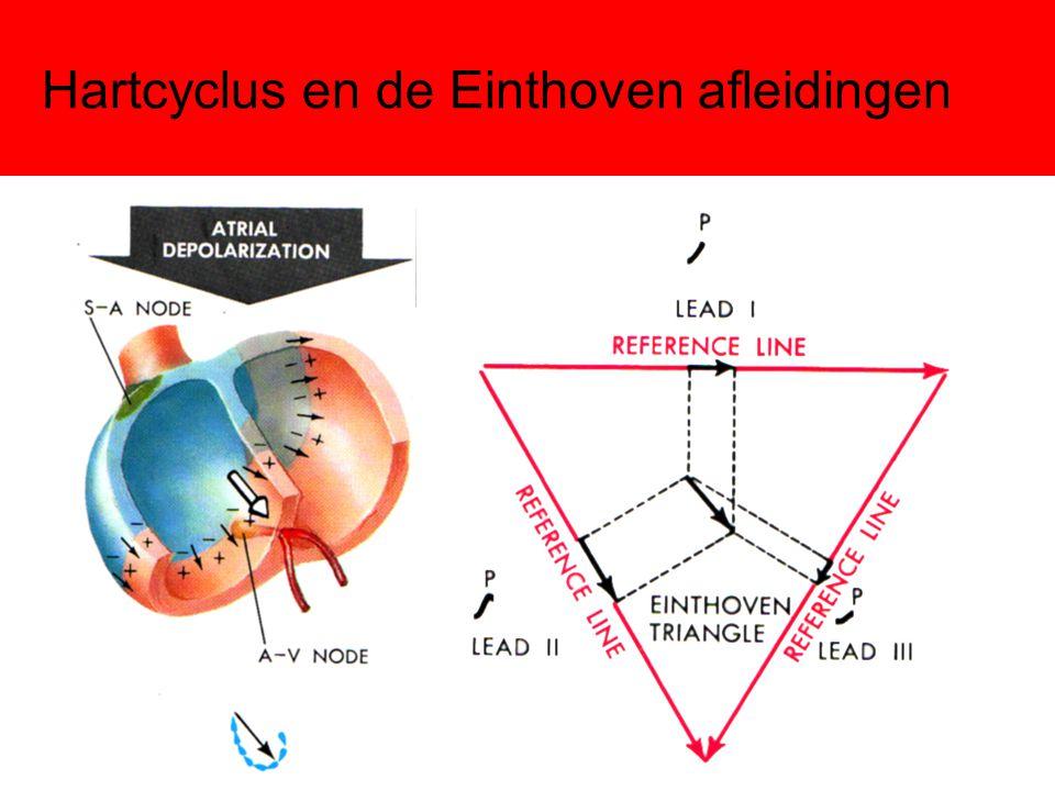 Hartcyclus en de Einthoven afleidingen