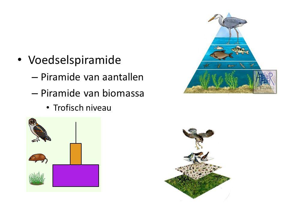 Voedselspiramide – Piramide van aantallen – Piramide van biomassa Trofisch niveau
