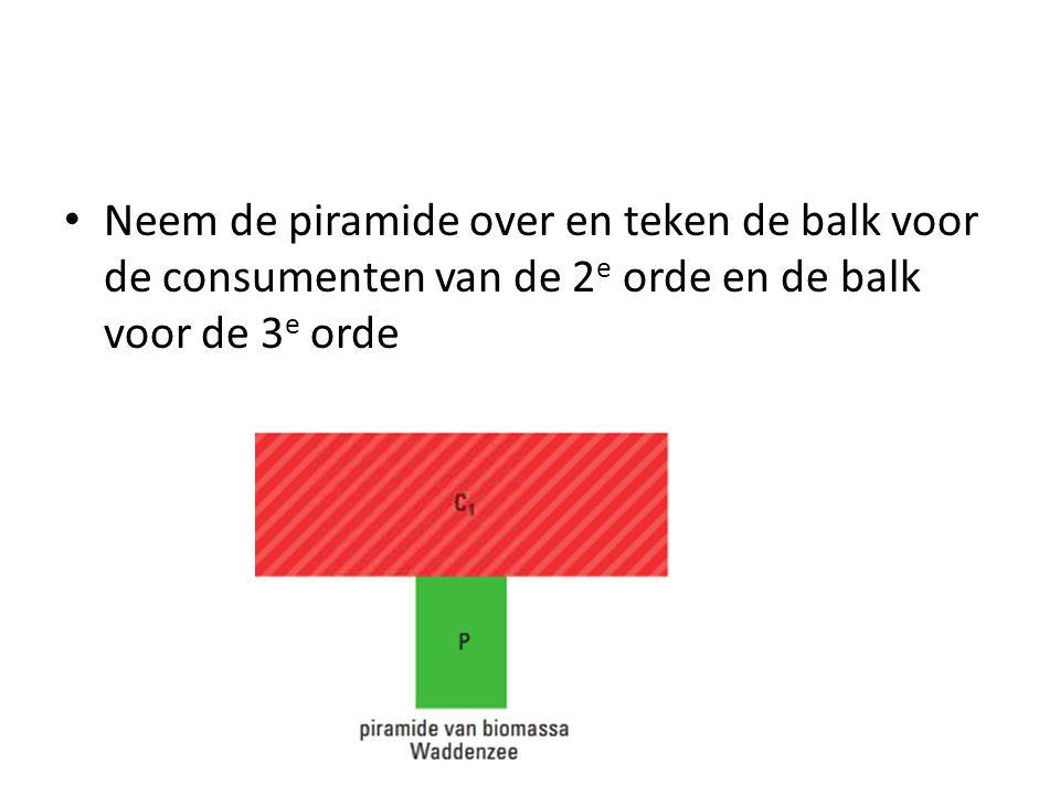 Neem de piramide over en teken de balk voor de consumenten van de 2 e orde en de balk voor de 3 e orde