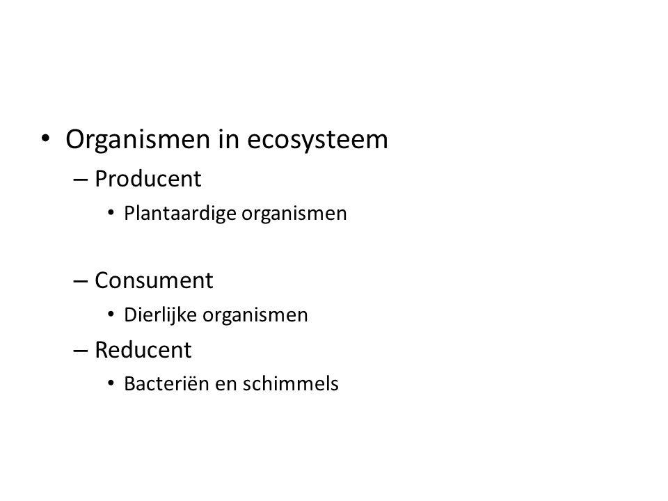 Organismen in ecosysteem – Producent Plantaardige organismen – Consument Dierlijke organismen – Reducent Bacteriën en schimmels
