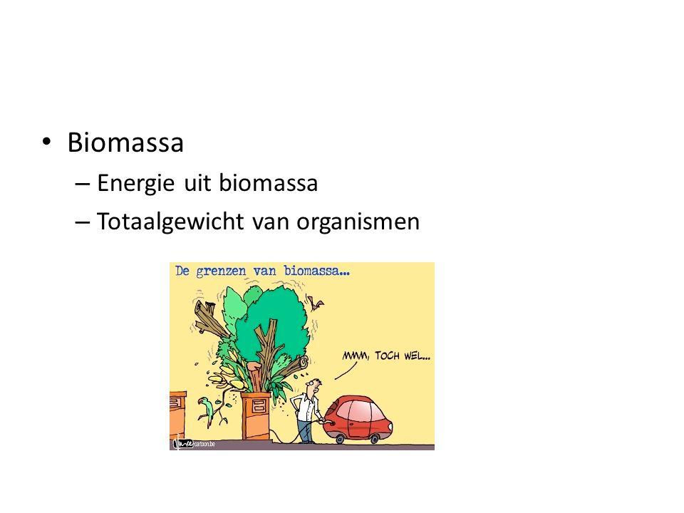 Biomassa – Energie uit biomassa – Totaalgewicht van organismen