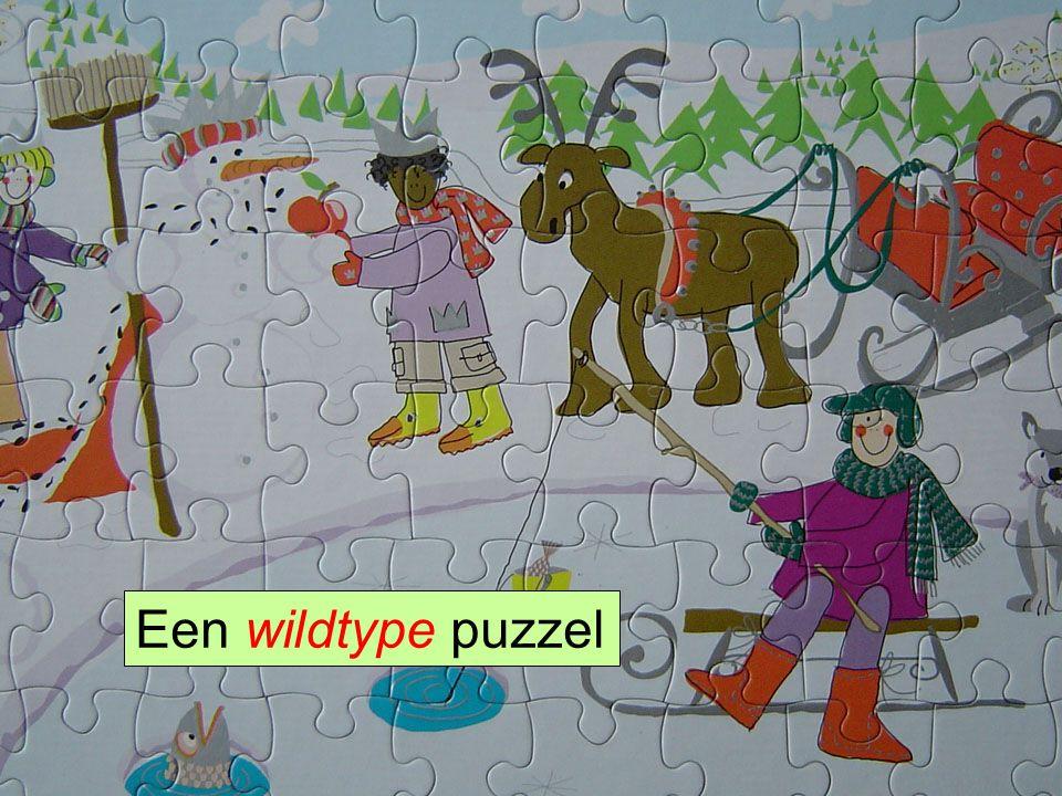 HLS41 Gene Hunting Een wildtype puzzel