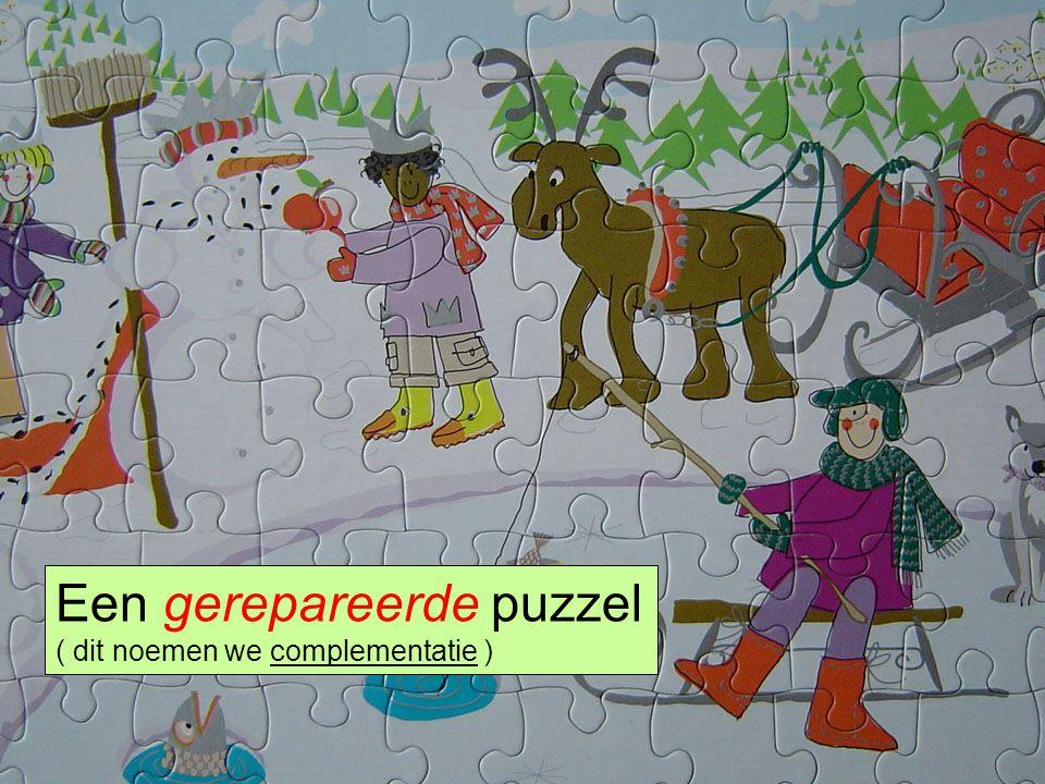 Een gerepareerde puzzel ( dit noemen we complementatie )