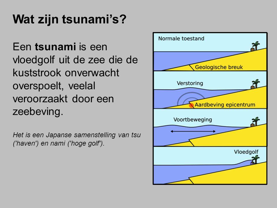 Een tsunami is een vloedgolf uit de zee die de kuststrook onverwacht overspoelt, veelal veroorzaakt door een zeebeving.