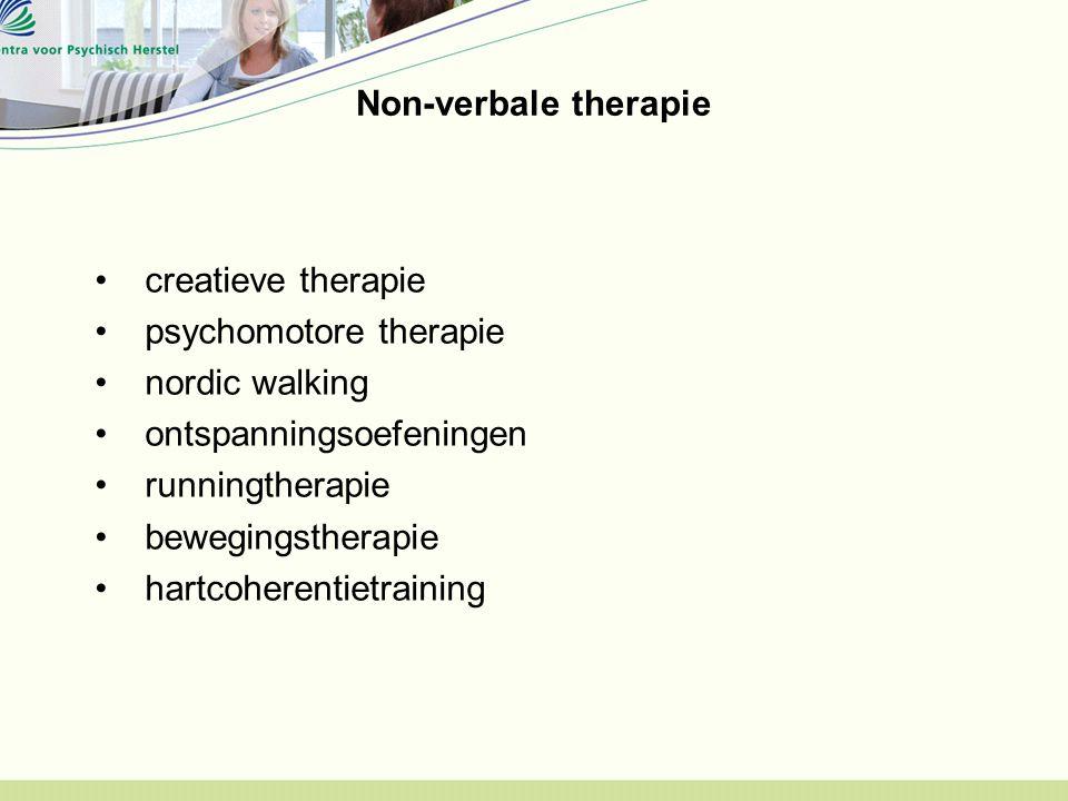 Non-verbale therapie creatieve therapie psychomotore therapie nordic walking ontspanningsoefeningen runningtherapie bewegingstherapie hartcoherentietr