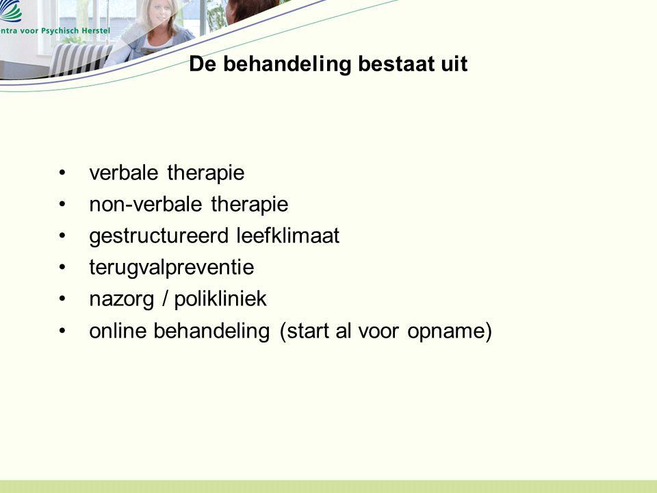 De behandeling bestaat uit verbale therapie non-verbale therapie gestructureerd leefklimaat terugvalpreventie nazorg / polikliniek online behandeling