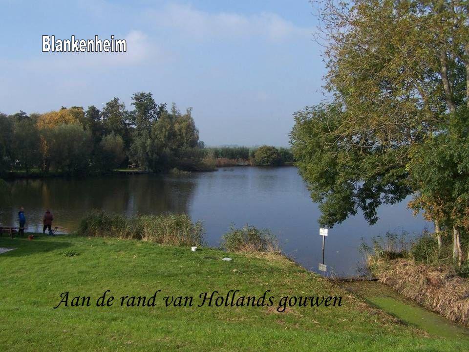 Aan de rand van Hollands gouwen