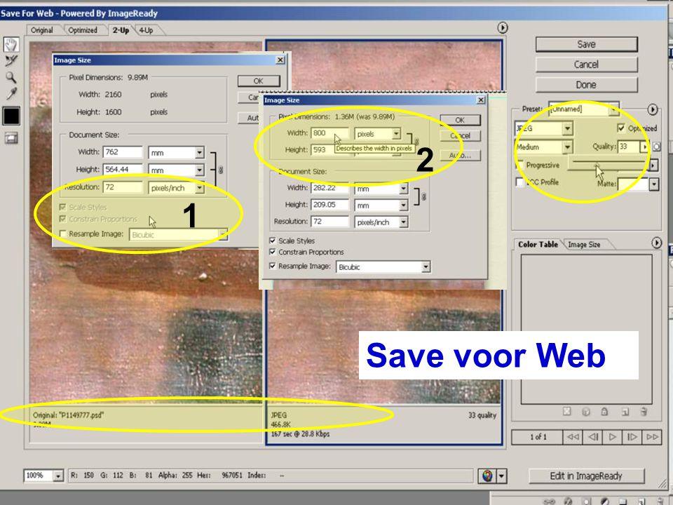 Save voor Web 1 2