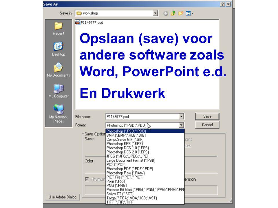 Opslaan (save) voor andere software zoals Word, PowerPoint e.d. En Drukwerk