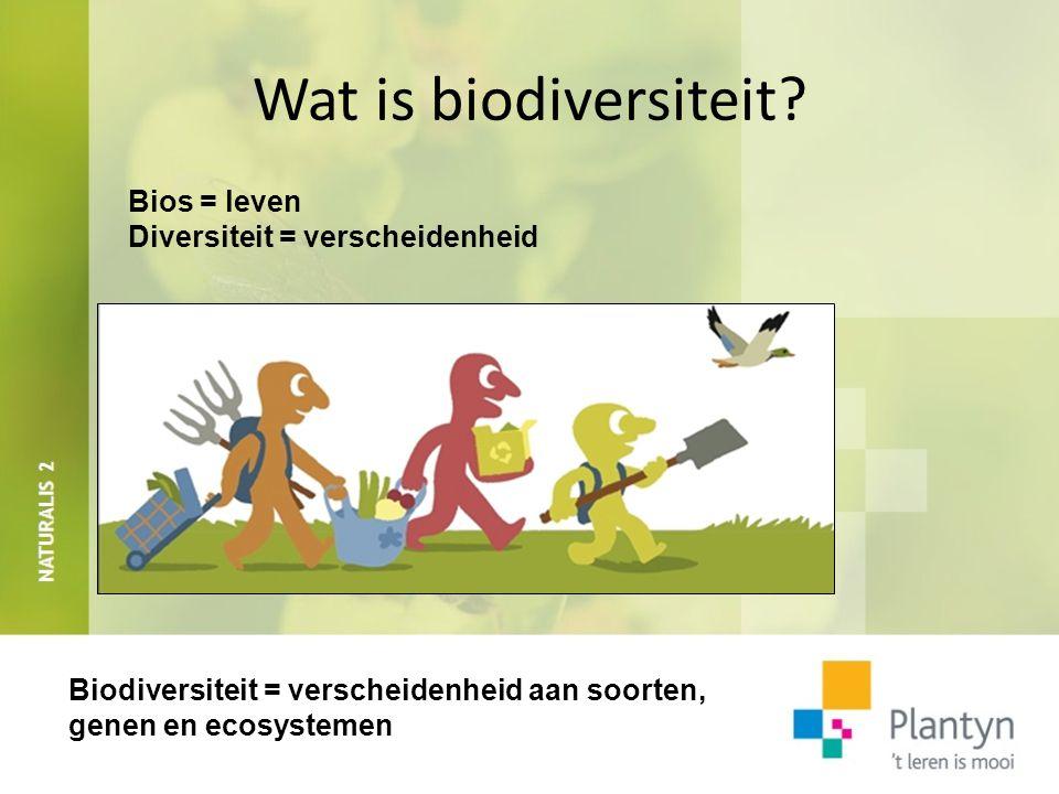 Wat is biodiversiteit? Bios = leven Diversiteit = verscheidenheid Biodiversiteit = verscheidenheid aan soorten, genen en ecosystemen