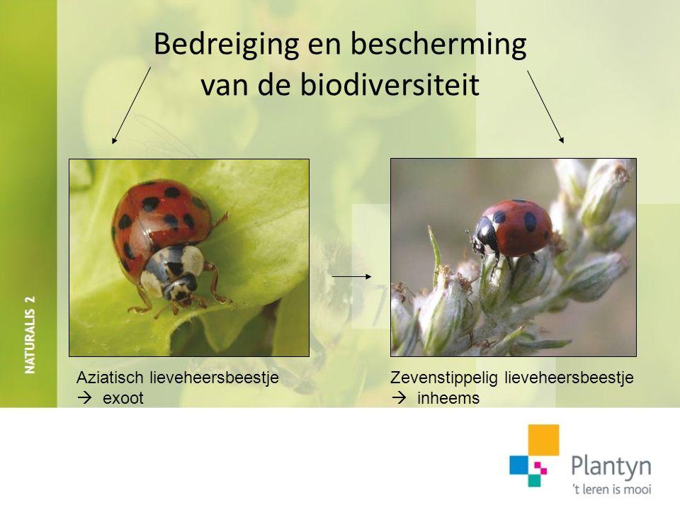 Bedreiging en bescherming biodiversiteit Fragmentatie ecosystemen Wildviaduct: verbinding ecosystemen