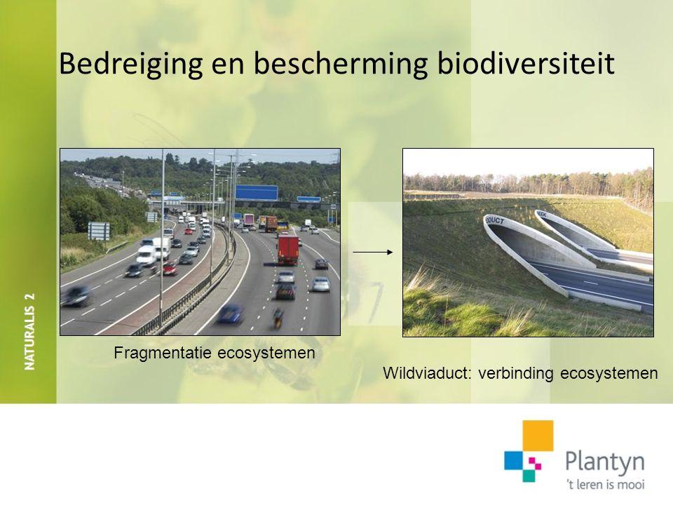 Bedreiging en bescherming biodiversiteit Watervervuiling (vb.