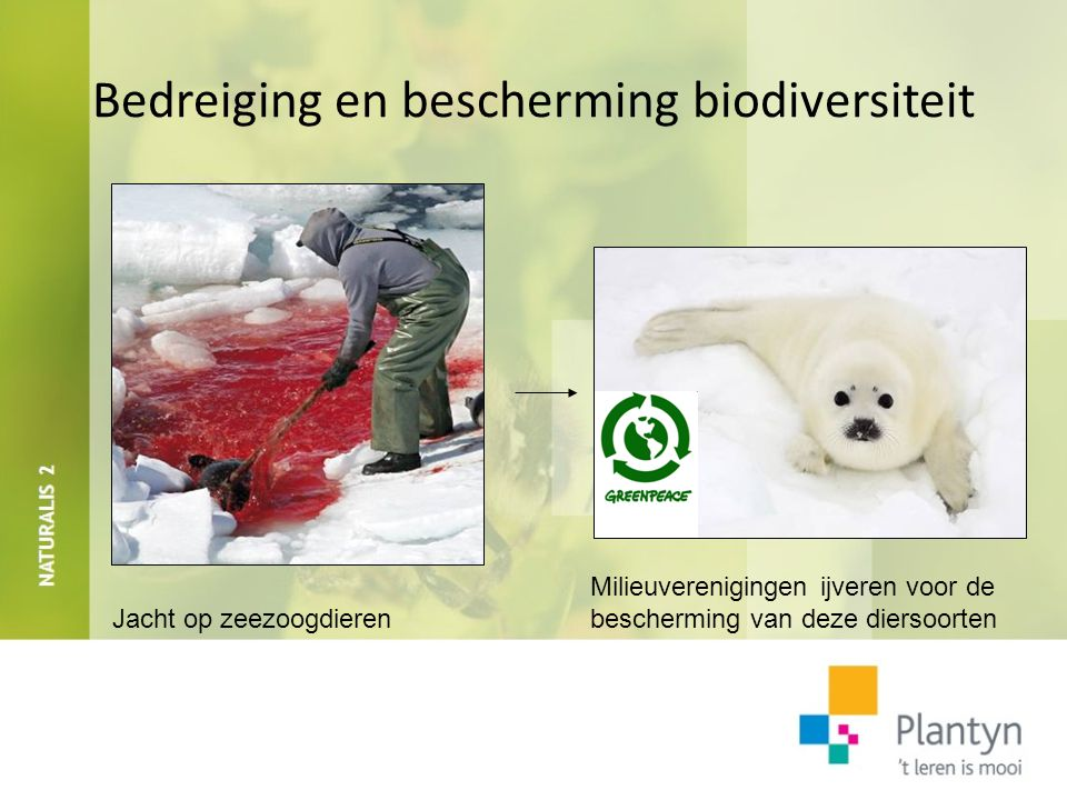 Bedreiging en bescherming biodiversiteit Milieuverenigingen ijveren voor de Jacht op zeezoogdieren bescherming van deze diersoorten