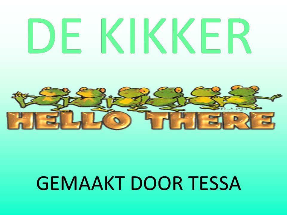 DE KIKKERDE KIKKER GEMAAKT DOOR TESSAGEMAAKT DOOR TESSA