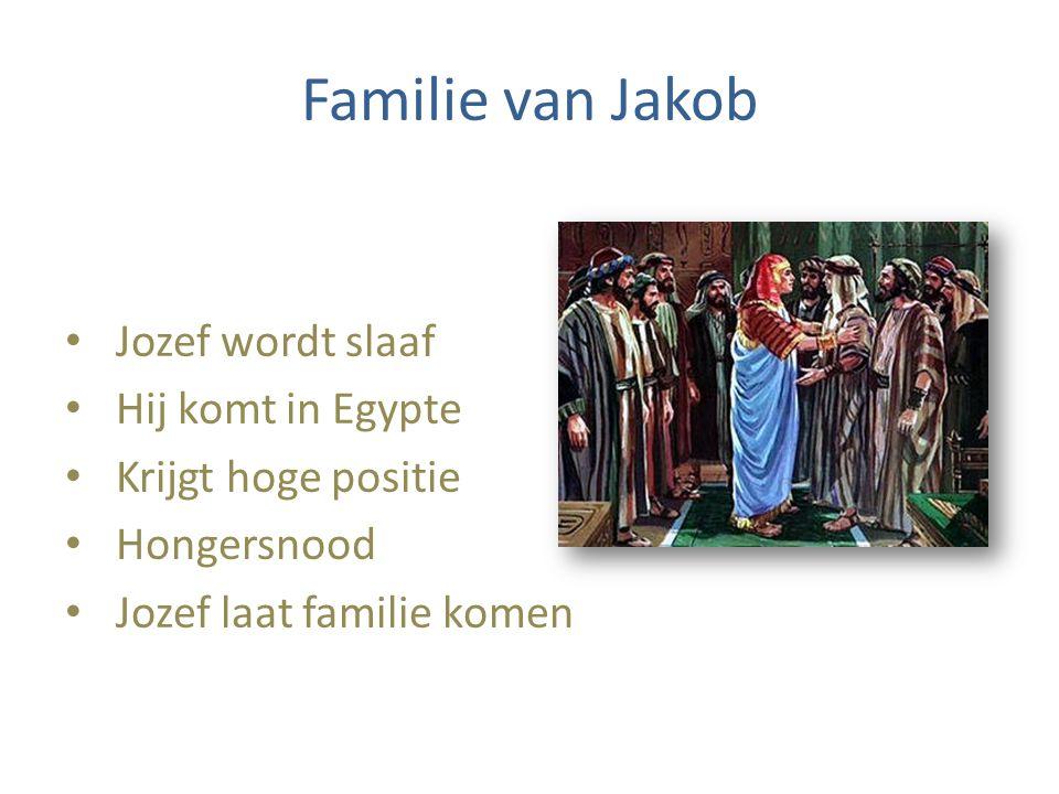 Familie van Jakob Jozef wordt slaaf Hij komt in Egypte Krijgt hoge positie Hongersnood Jozef laat familie komen