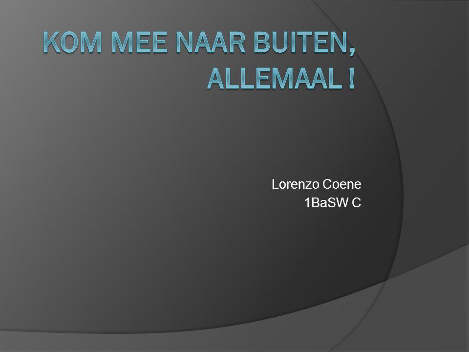 Lorenzo Coene 1BaSW C