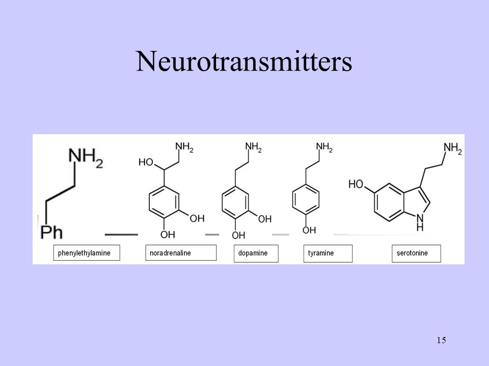 15 Neurotransmitters