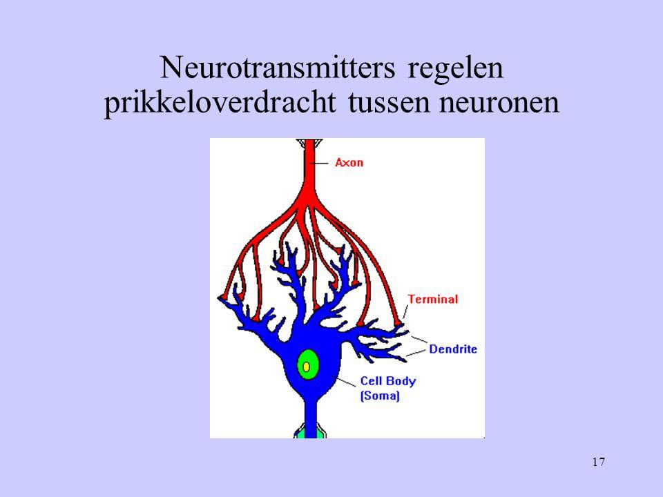 17 Neurotransmitters regelen prikkeloverdracht tussen neuronen