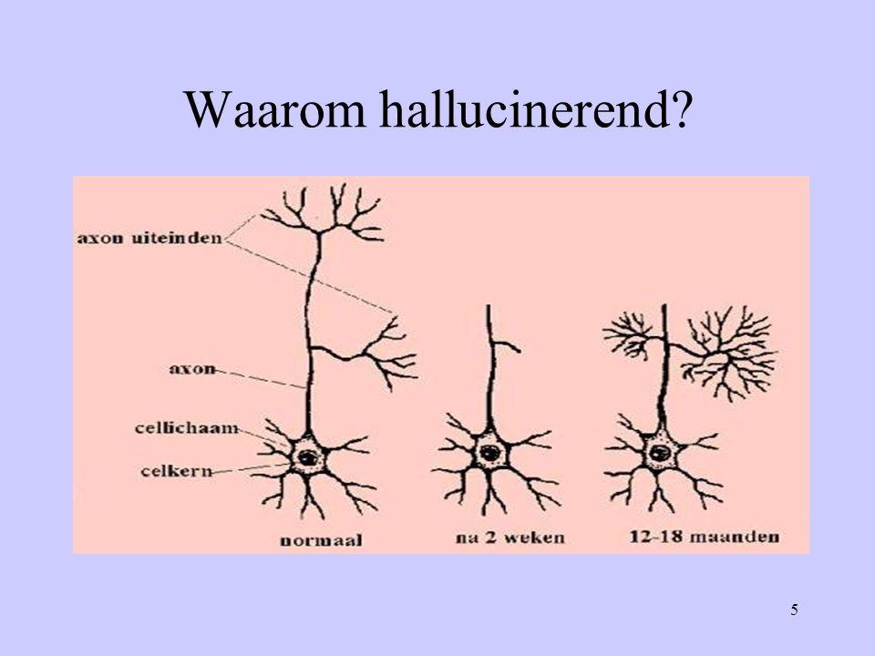 5 Waarom hallucinerend?