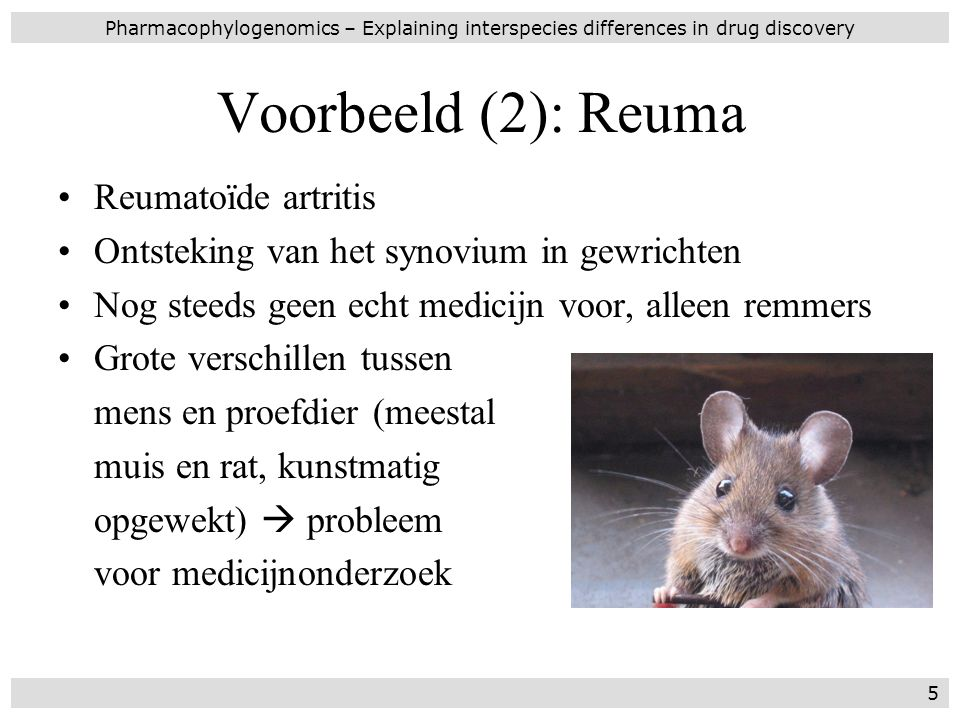 Dit proefschrift Toont enkele toepassingen van orthologie: –in de immunologie (H5) –in de evolutie van genen (H6) –in de transcriptomics (H7) Plaatst dit alles in een kader van medicijn- ontwikkeling: –inleiding (H1) –discussie (H8) Pharmacophylogenomics – Explaining interspecies differences in drug discovery 16