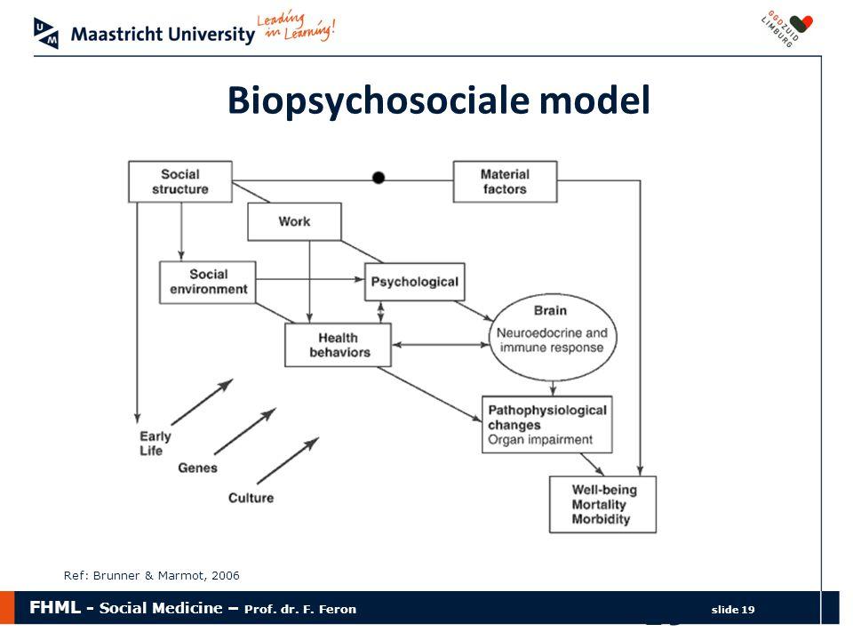 FHML - Social Medicine – Prof. dr. F. Feron slide 19 19 Biopsychosociale model Ref: Brunner & Marmot, 2006