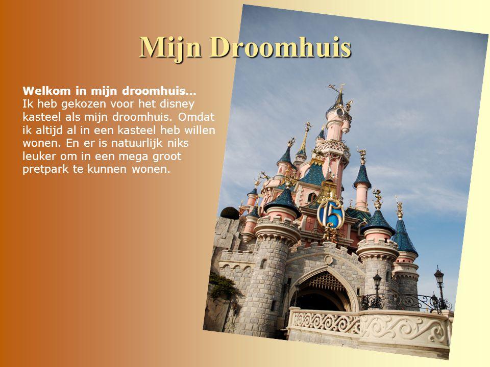 Welkom in mijn droomhuis… Ik heb gekozen voor het disney kasteel als mijn droomhuis.