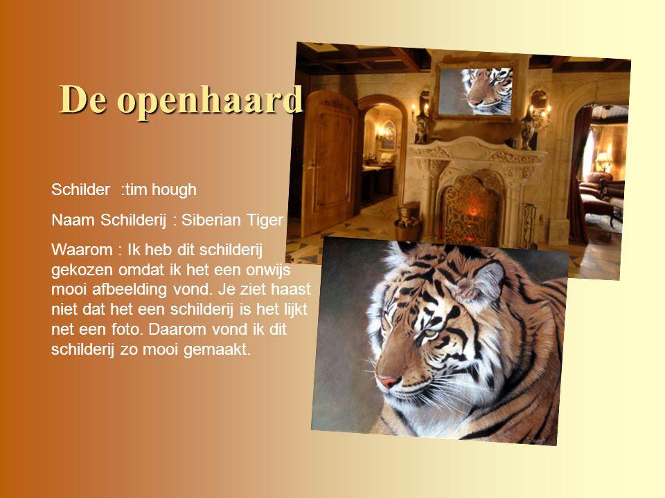De openhaard Schilder :tim hough Naam Schilderij : Siberian Tiger Waarom : Ik heb dit schilderij gekozen omdat ik het een onwijs mooi afbeelding vond.