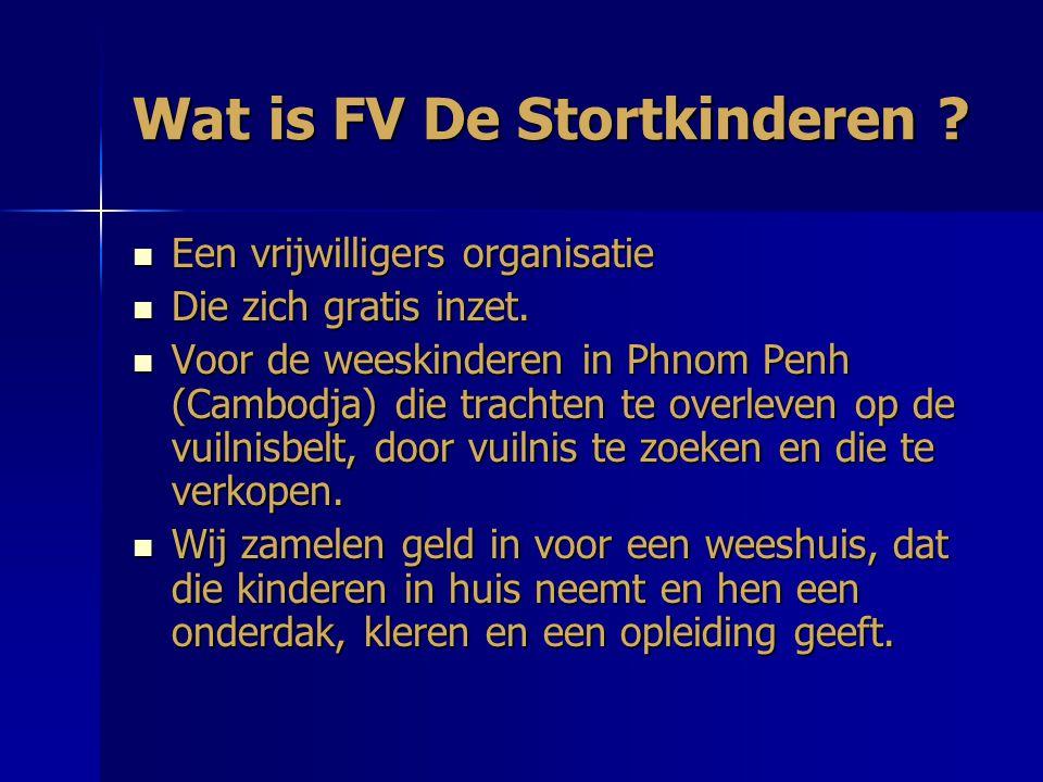 Wat is FV De Stortkinderen .