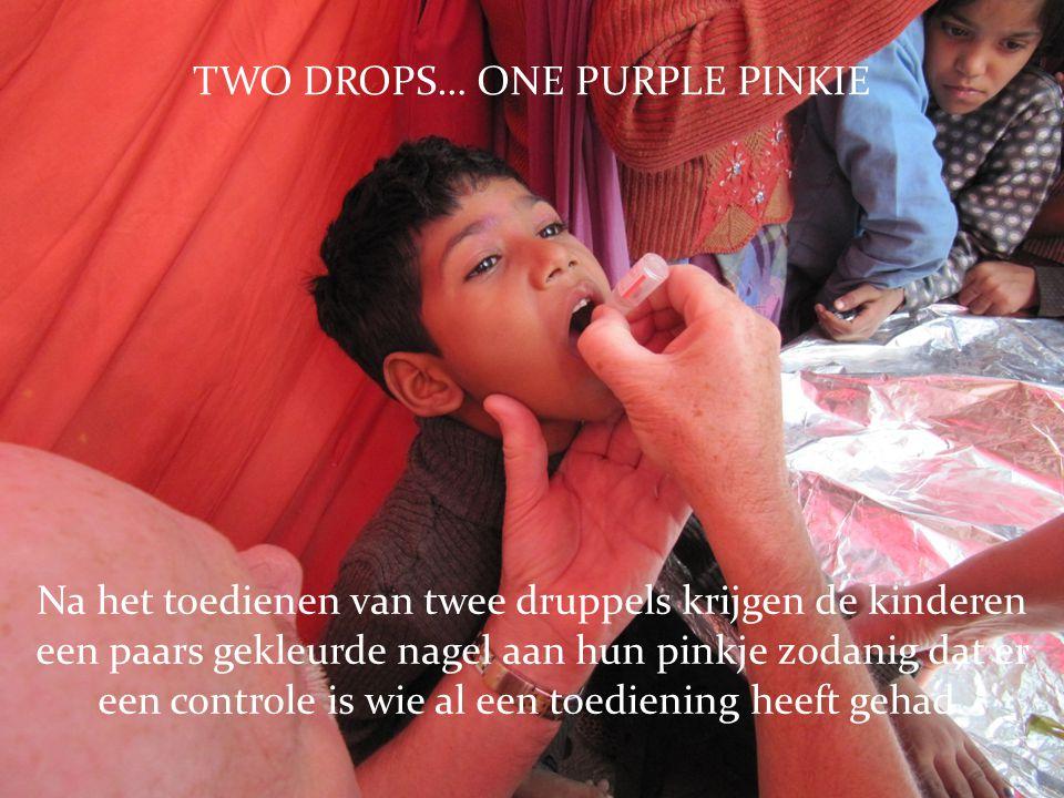 TWO DROPS… ONE PURPLE PINKIE Na het toedienen van twee druppels krijgen de kinderen een paars gekleurde nagel aan hun pinkje zodanig dat er een controle is wie al een toediening heeft gehad.