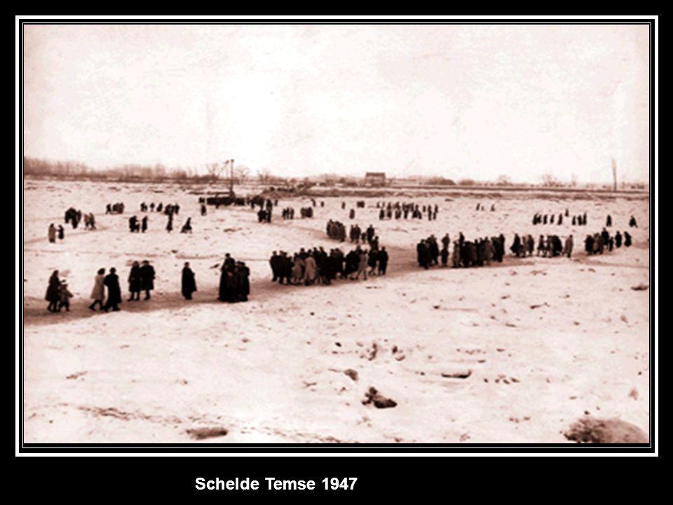 Schelde Temse 1947