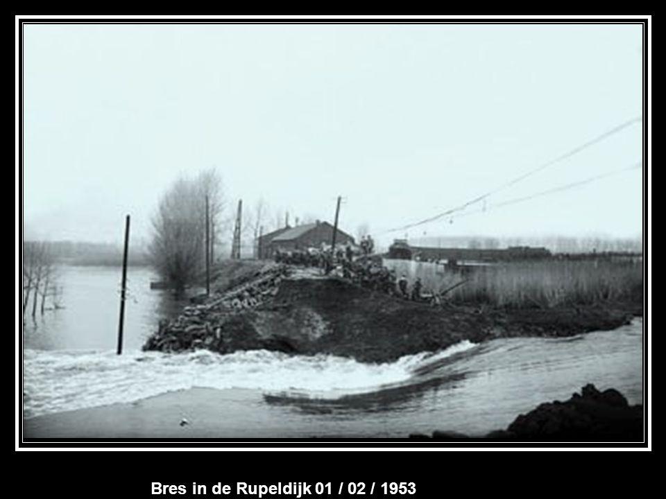 Lokeren 01/ 01/ 1948