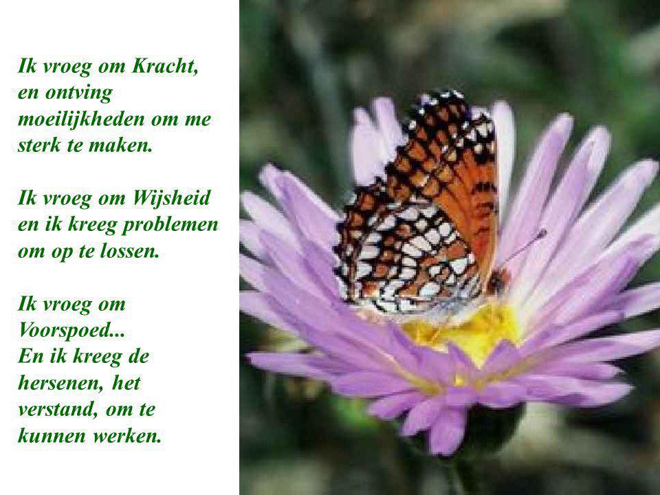 Een mooi gedichtje.
