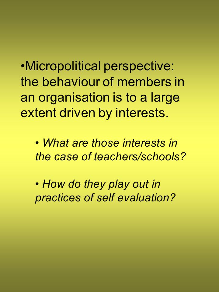 Micropolitical perspective: the behaviour of members in an organisation is to a large extent driven by interests. What are those interests in the case