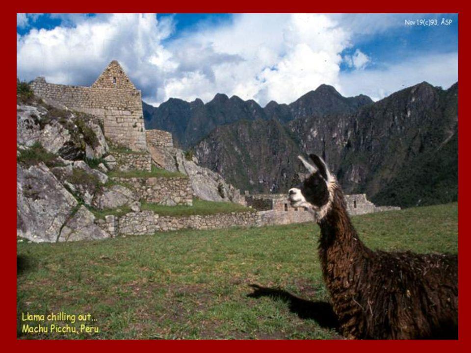 H e t 7 d e W e r e l d w o n d e r, D e C h i n e s e M u u r! De voormalige Inca Hoofdstad Machu picho Hoog in het Andes Gebergte