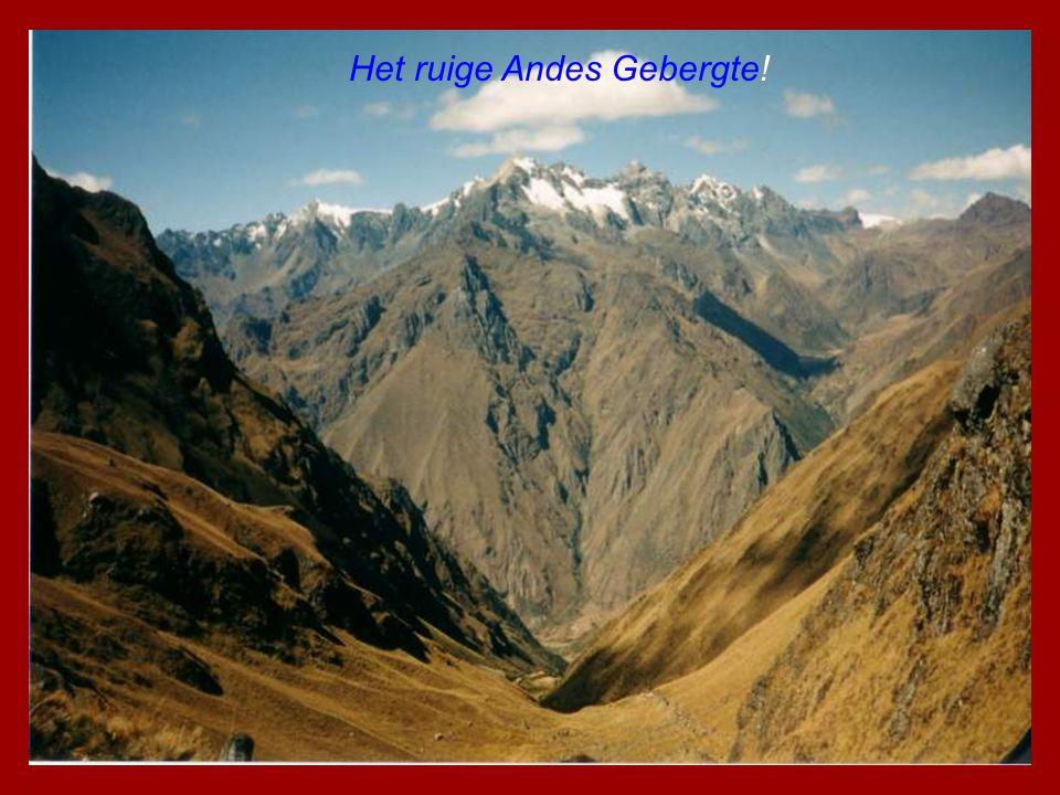 Het ruige Andes Gebergte!