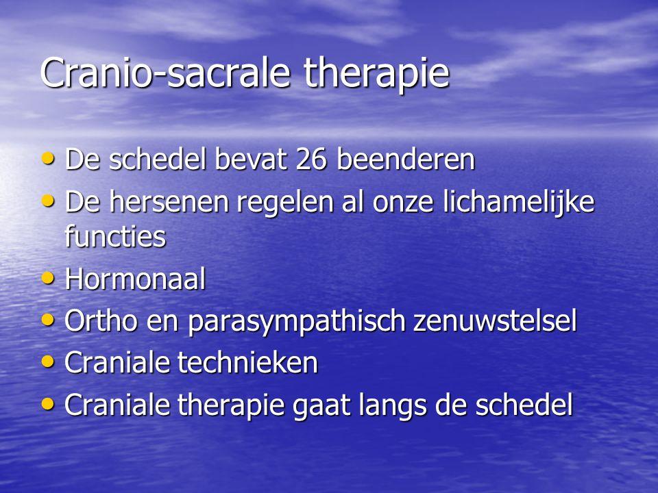 Cranio-sacrale therapie De schedel bevat 26 beenderen De schedel bevat 26 beenderen De hersenen regelen al onze lichamelijke functies De hersenen rege