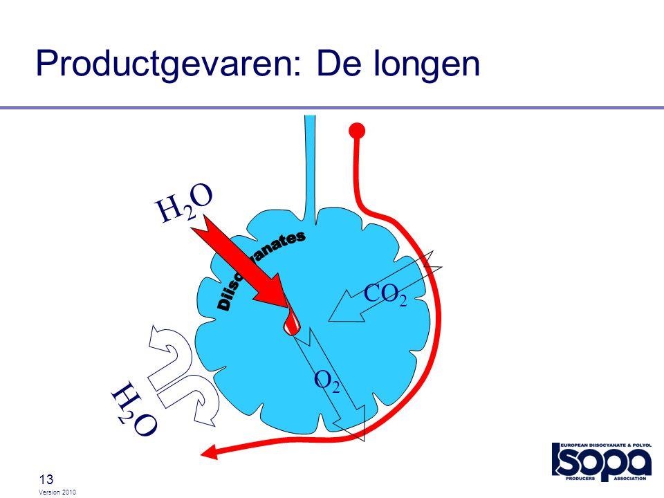 Version 2010 13 Productgevaren: De longen CO 2 O2O2 H2OH2O H2OH2O