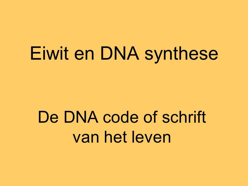 Eiwit en DNA synthese De DNA code of schrift van het leven