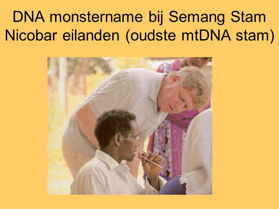 DNA monstername bij Semang Stam Nicobar eilanden (oudste mtDNA stam)