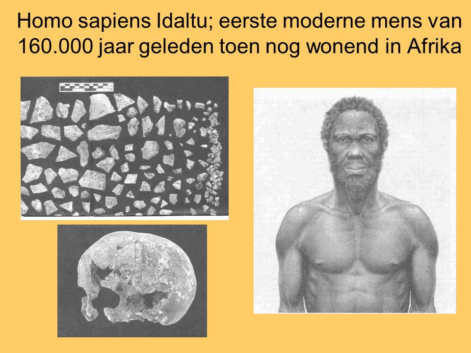 Homo sapiens Idaltu; eerste moderne mens van 160.000 jaar geleden toen nog wonend in Afrika