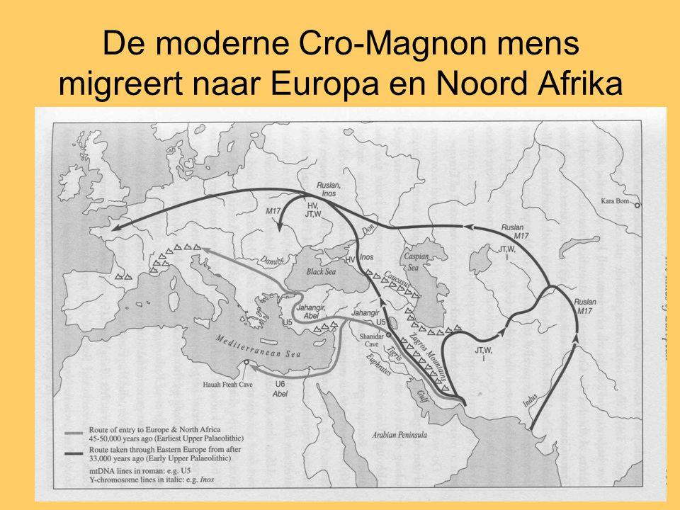 De moderne Cro-Magnon mens migreert naar Europa en Noord Afrika