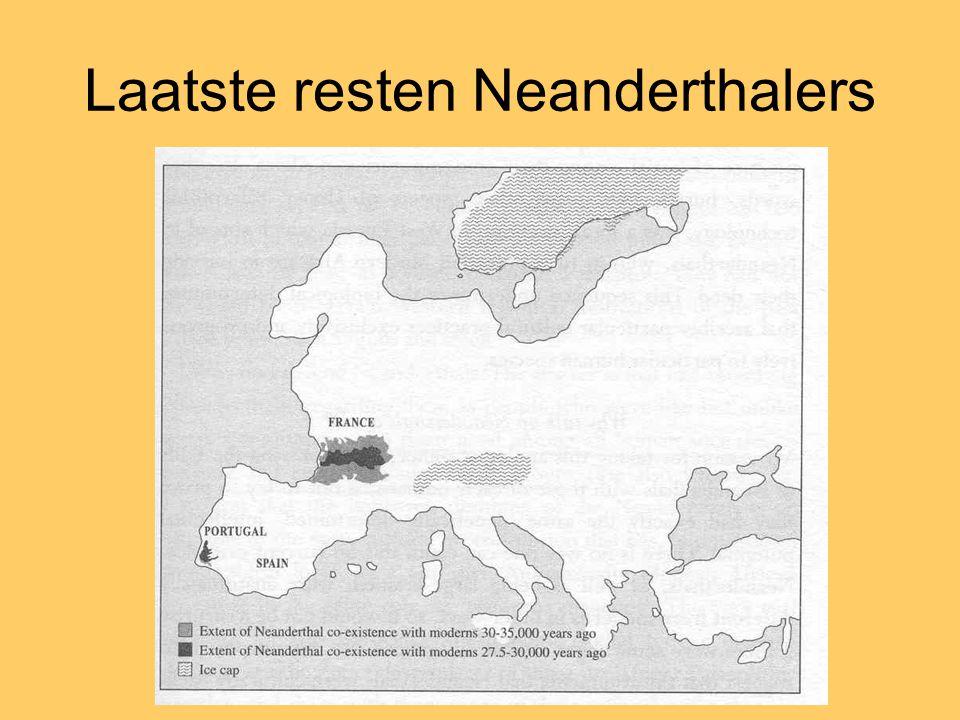 Laatste resten Neanderthalers